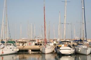 numerous boats docked at a marina